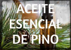 aceite esencial de pino