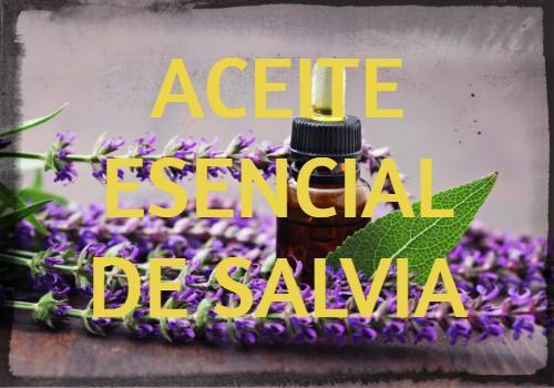 Aceite Esencial de Salvia: Propiedades, usos y beneficios