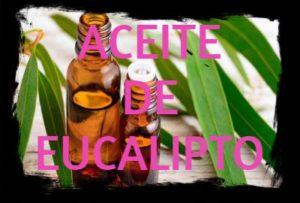 aceite esencial de eucalipto