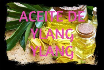 Aceite Esencial de Ylang Ylang: Propiedades, usos y beneficios