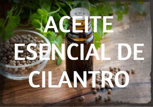 Aceite Esencial de Cilantro: Propiedades, usos y beneficios
