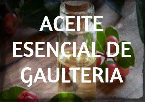 Aceite Esencial de Gaulteria: Propiedades, usos y beneficios