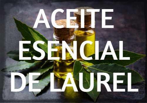 Aceite Esencial de Laurel: Propiedades, usos y beneficios